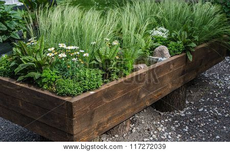 A variety of plants and vegetables grown in a wooden box