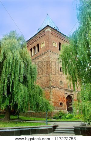Castle Surounded By The Willows In Drohobych