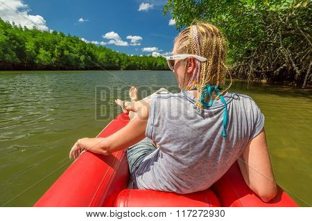 kayak in mangrove forests