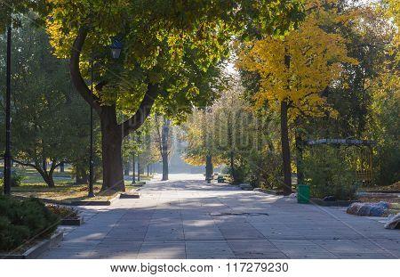 Autumn Morning At Park