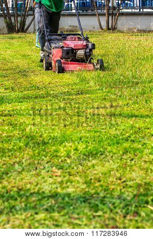 Lawn mowers and garden of the house.