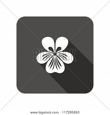 Viola, violet, nasturtium, pansy flower icons. Spring floral symbol. Round circle flat icon with lon