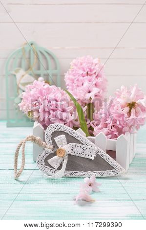 Hyacinths Flowers In Wooden Box And Decorative Heart