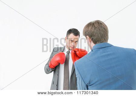 Businessmen in boxing gloves