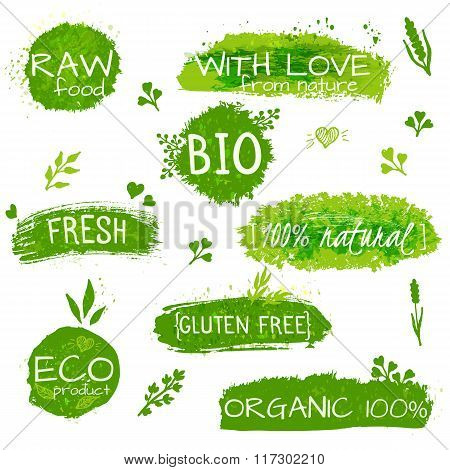 Set of logos, stamps, badges, labels for natural eco products, farms, organic. Floral elements and g