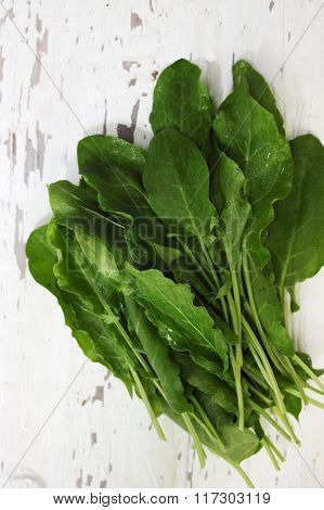 sorrel on a wooden table, top view