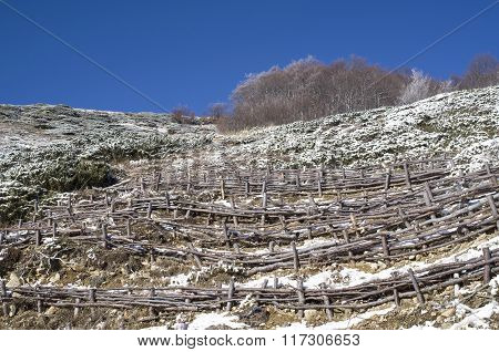 Wooden Hedge To Strengthen The Slope On Hill, Bulgaria