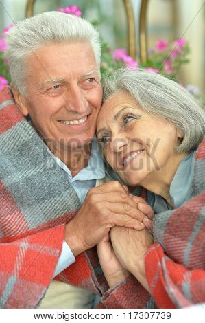 Senior couple  in summer park