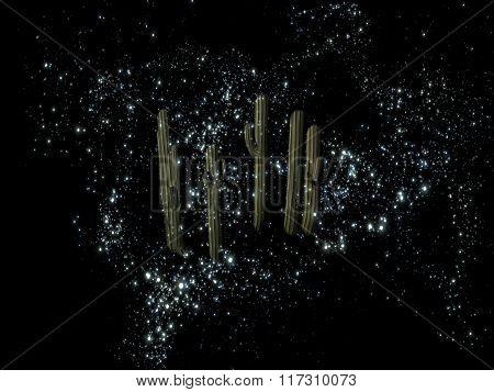 Mysterious Night Sky Cactus
