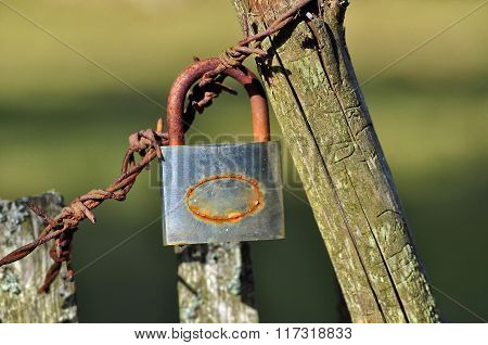Old lock on barbed wire