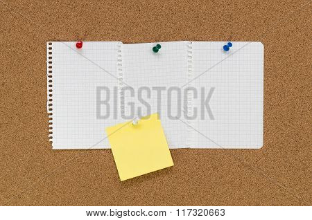 Cork Board And Note Papers