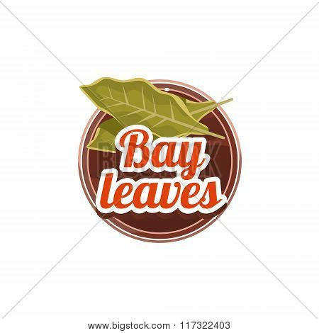 Bay Leaves Spice. Vector Illustration.