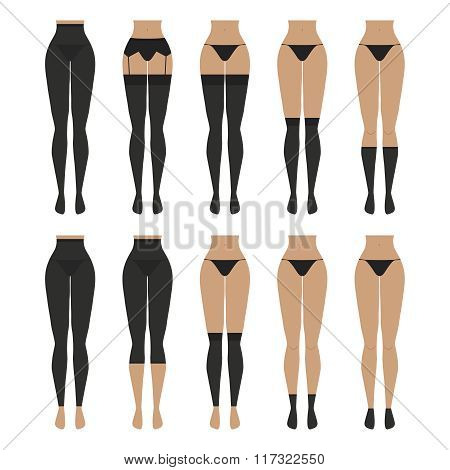 Vector illustration. Hosiery elements - tights, stockings, golfs, leg warmers, socks. Woman lingerie