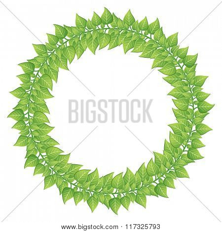 Green leaves round frame isolated on white background.
