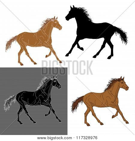 set of silhouettes color horse