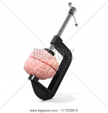 3D Vise And Brain,  Stress Concept