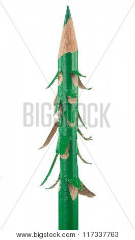 Christmas tree from a green pencil