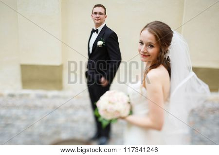 Adoring Happy Cute Groom And Bride On The Background Vienna