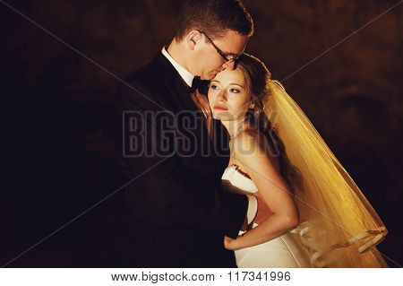 Adorning Elegant Fashion Groom And Bride Is Hugging  On The Background Night Vienna
