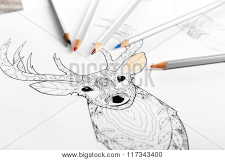 Coloring of deer with pencils on wooden table, close up