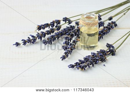 Aromatic lavender essential oil in bottle.