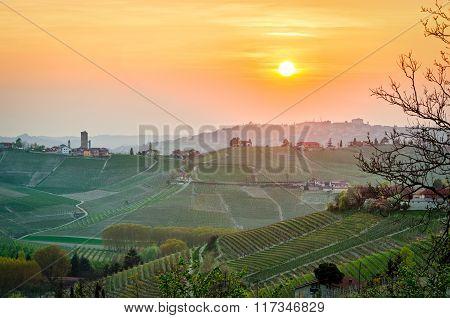 Le Langhe (piedmont, Italy), Landscape At Sunset