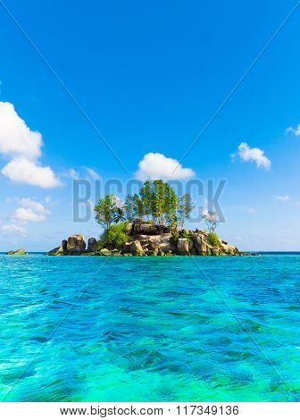 Corals Paradise Scene