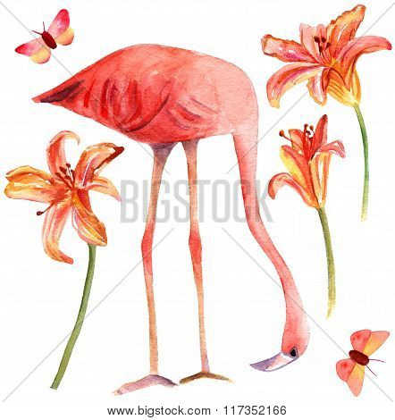Set Of Watercolor Drawings Of Flamingo Bird, Lilies, And Butterflies