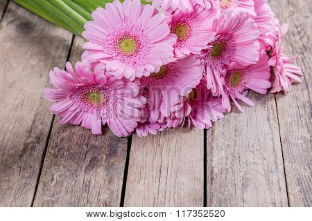 Fresh Gerbera Flowers On Wooden Background