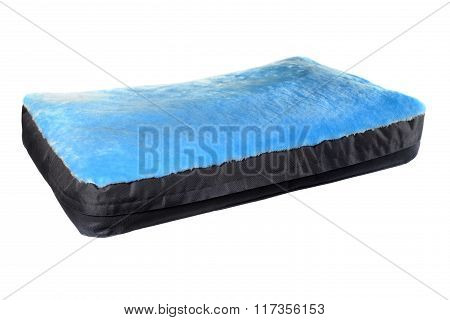 Isolated Colorful Dog Sleeping And Resting Sofa, Mattress