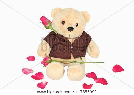 Fuzzy Bear Holding A Red Rose.