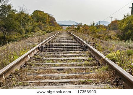 railroad tracks leading to the horizon