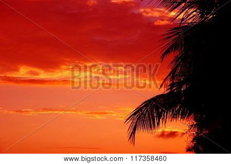 Sunset on the beach of the Atlantic coast of the Dominican Republic