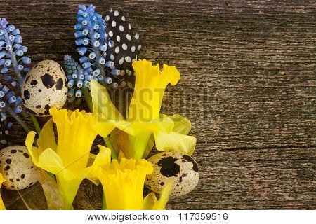Muscari, daffodils  and eggs