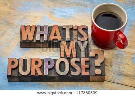 What is my purpose question - text in vintage letterpress wood type printing blocks wint cup of coffee