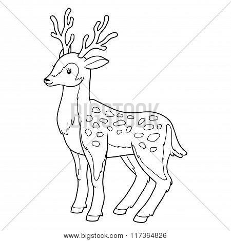 Coloring Book For Children (deer)