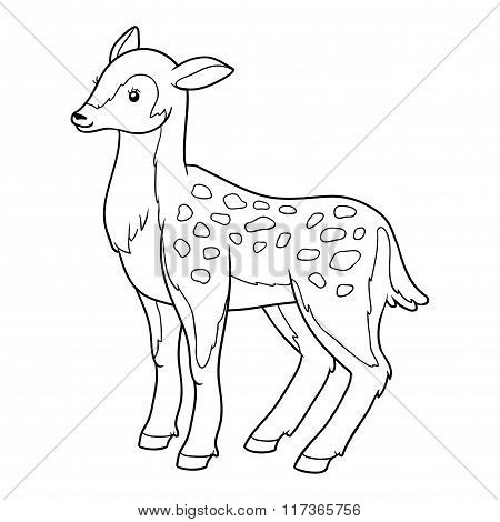 Coloring Book For Children (deer, Doe)