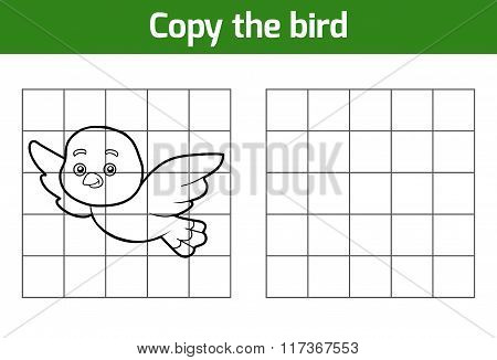 Copy The Picture (bird)