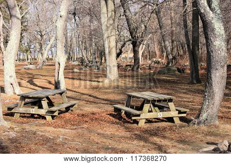 Picnic Tables Two