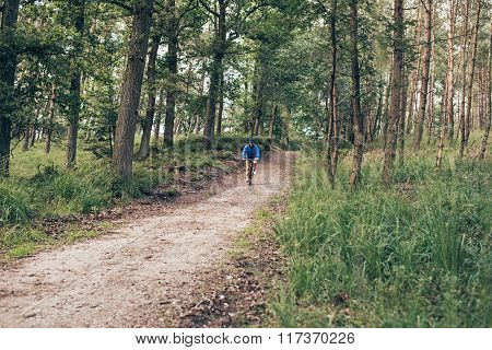 Active Man Cycling On Forest Trail.
