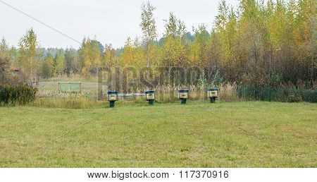 Bee Hives Are In A Clearing In The Woods