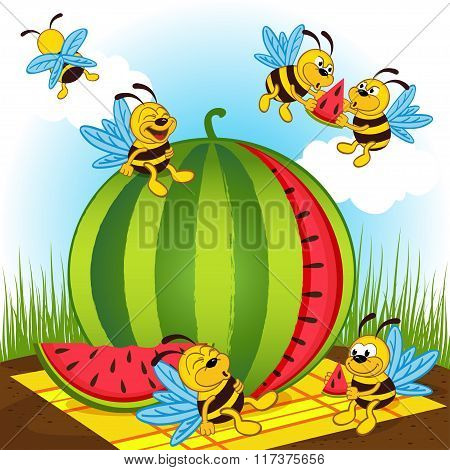 bees and watermelon