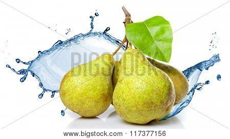 fresh water splash on pears isolated on white. Header for website