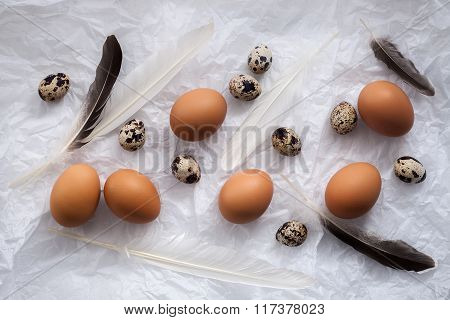 Poultry Eggs Flat Lay Still Life With Food Stylish
