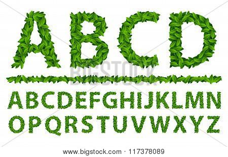 Alphabet Seasonal Leaves Spring