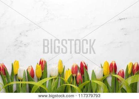 Tulips with ribbon on white marble,Easter decoration.