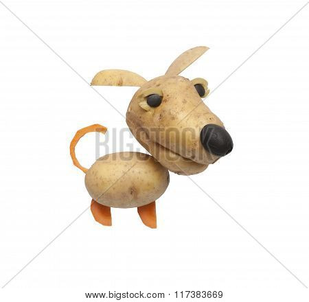 Funny Dog Made Of Potatoes