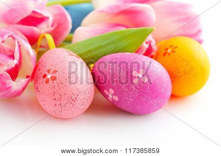 Easter Eggs With Pink Tulip Flowers On White Background
