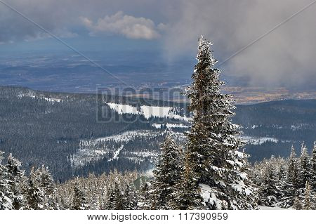 Winter landscape on a cloudy day in the Giant Mountains