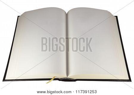 Vintage Open Book